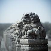 León de piedra antigua — Foto de Stock