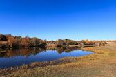 Lago sereno in autunno — Foto Stock