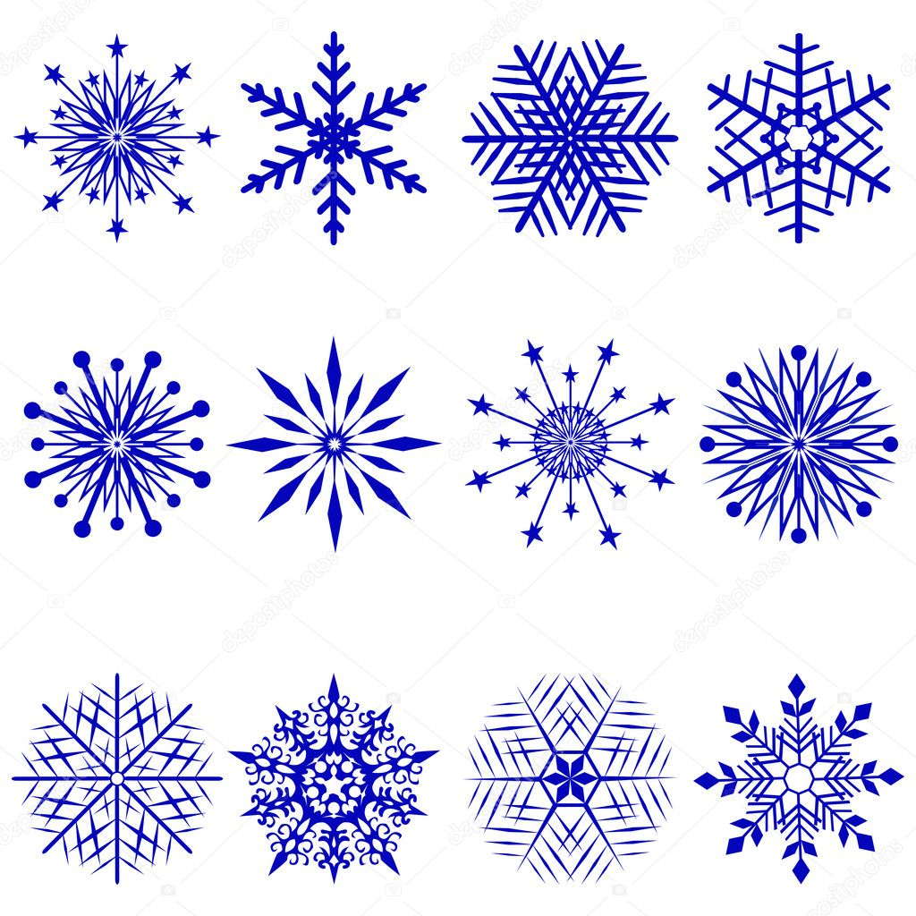 Set of 12 snowflakes. Vector  illustration. — Stock Vector #6851964