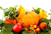 Flower arrangement for halloween — Stock Photo