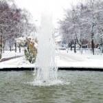 Fountain in winter setting — Stock Photo
