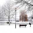 Dutch park in wintertime — Stock Photo