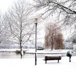 Dutch park in wintertime — Stock Photo #7811058