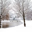 Stock Photo: Dutch park in wintertime
