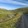 Stock Photo: Scenic road on Iceland