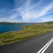 Scenic road on Iceland — Stock Photo #7919494