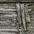 Grunge wood texture - Stock Photo