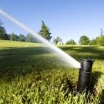 Automated underground sprinkler — Stock Photo