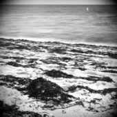 Océano abstracto en blanco y negro — Foto de Stock