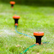 Royalty-Free Stock Photo: Sprinkler system