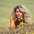 Stock Photo: Beauty woman and sunflowers