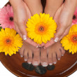 Spa and Pedicure — Stock Photo