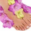 Pedicure Spa — Stock Photo #7363037