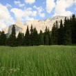 Val Gardena — Stock Photo