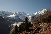 Piz palu i monte bellavista - val morteratsch — Zdjęcie stockowe