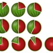 Watermelon circular diagrams — Stock Photo #7595495
