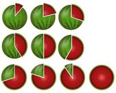 Watermelon circular diagrams — Stock Photo