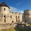 Stock Photo: Cesis castle.