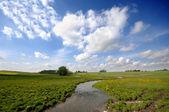 Küçük nehir ve framland — Stok fotoğraf
