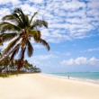 Tropical beach — Stock Photo #7311292