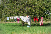 Hanging laundry — Stock Photo