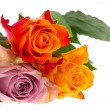 Bouquet roses in various colors — Stock Photo #6954957