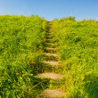 Stairs up hill — Stock Photo