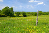 Typical French landscape — Stock Photo