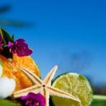 Tropical still life — Stock Photo