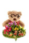 花の中にクマします。 — ストック写真