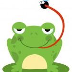 Frog Catching Bug — Stock Photo