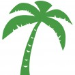 Green Palm Three Silhouette — Stock Photo