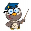 Professor Owl Holding A Pointer Stick — Stock Photo