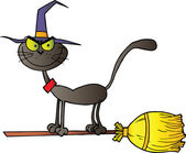 Black Cat Which Fly A Broom — Stock Photo