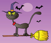 Black Cat Which Fly A Broom In Halloween Night — Stock Photo