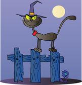 černá kočka čarodějnice na plot v noci — Stock fotografie