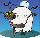 Gatto di halloween strega da una lapide sull'azzurro — Foto Stock
