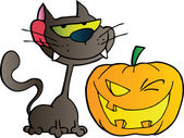 Black Cat And Winking Halloween Jackolantern Pumpkin — Stock Photo