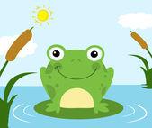 Frog Cartoon Character — Stock Photo