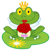 Frog Bride On A Lilypad — Stock Photo