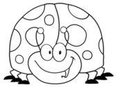 Overzicht lieveheersbeestje — Stockfoto