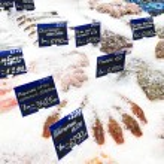 Fresh raw fish — Stock Photo