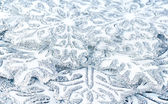 Copos de nieve — Foto de Stock