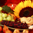 Thanksgiving — Stock Photo #6908561