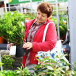 Royalty-Free Stock Photo: Senior woman buying plants
