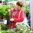 Senior woman buying plants - Stock Photo