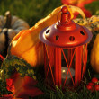 Thanksgiving — Stockfoto #6925602