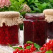 Jars of homemade red currant jam with fresh fruits — Stock Photo #7322521