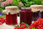 Jars of homemade red currant jam with fresh fruits — Stock Photo