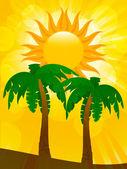Palmbomen en zomerzon — Stockvector